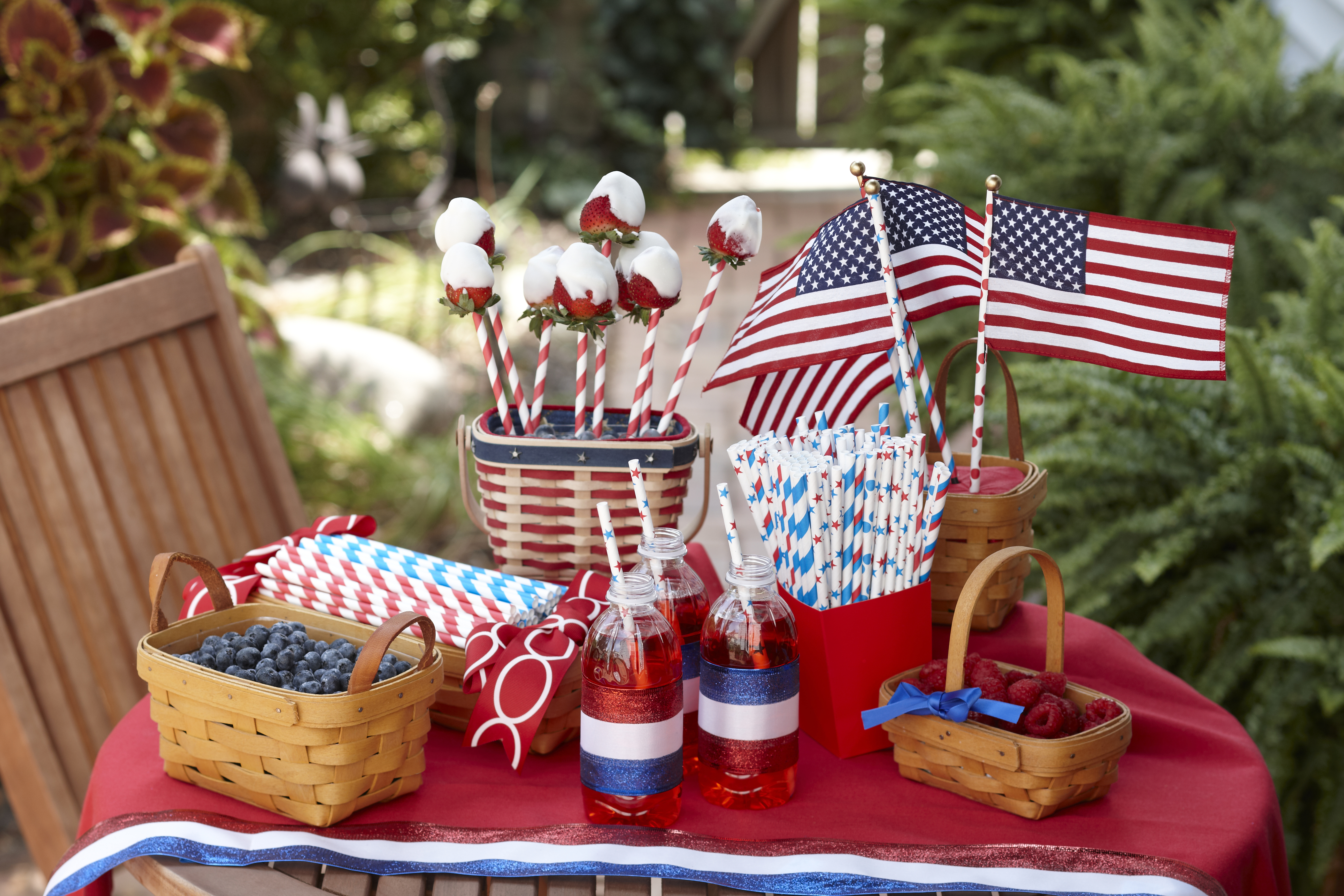 Fourth of July Party Planning - Theresa's Reviews - www.theresasreviews.com - Photo courtesy of Aardvark