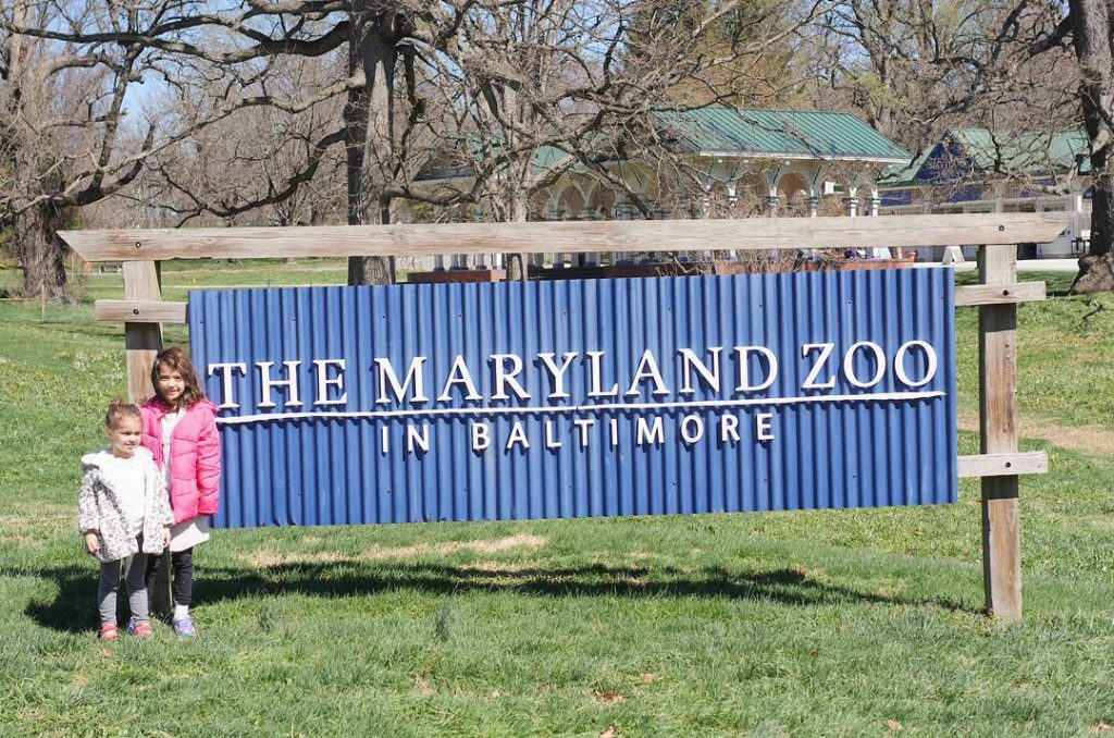 Check out our incredible animal adventures at the marylandzoo inhellip