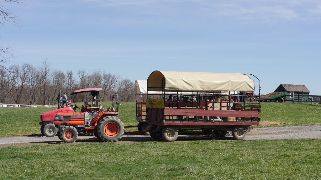 When you take a hay ride, your guests can see the farm and enchanted forest attractions up close.