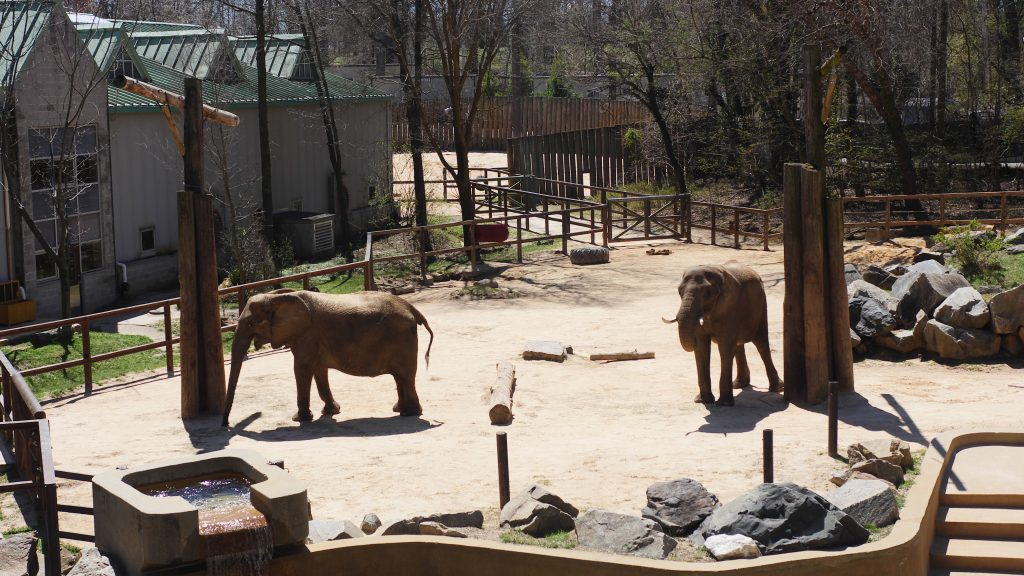 With over 1500 animals, the zoo holds over 200 species.