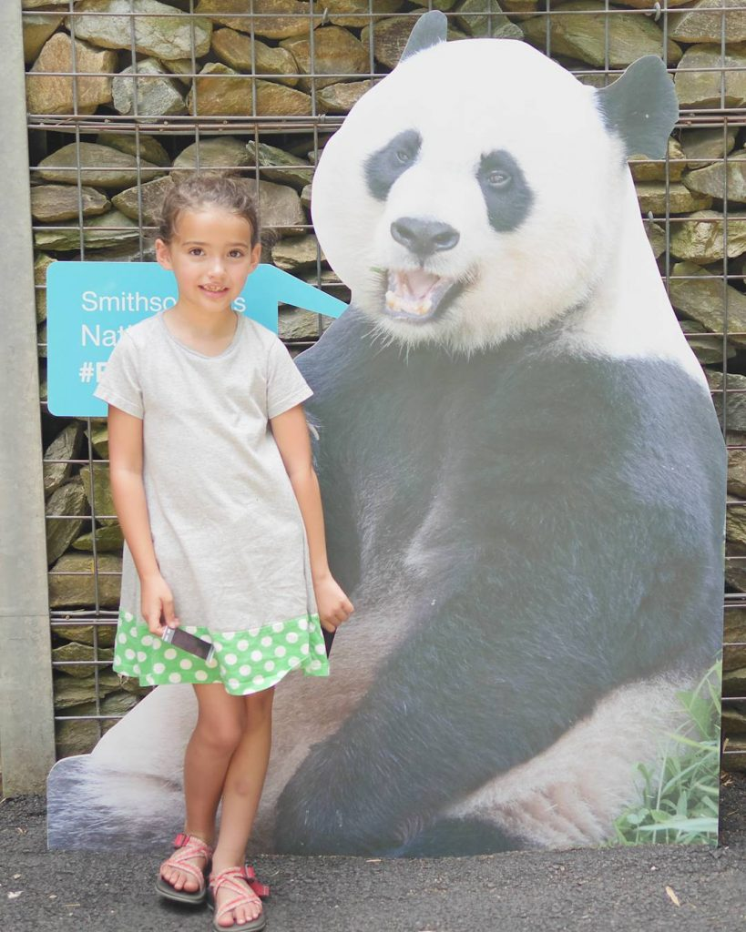 ad Love pandas as much as we do? Check outhellip