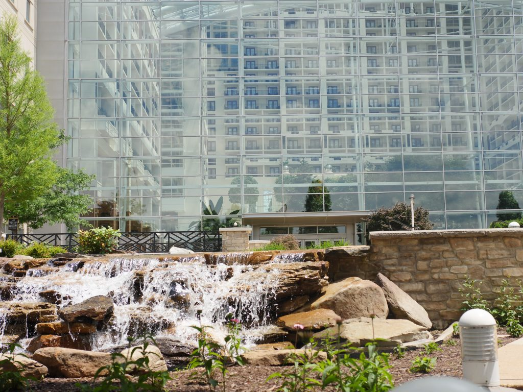 Theresa's Reviews - The Gaylord National Harbor offers family friendly events on New Year's Eve, while also offering the New Year's Eve gala, Big Night DC.