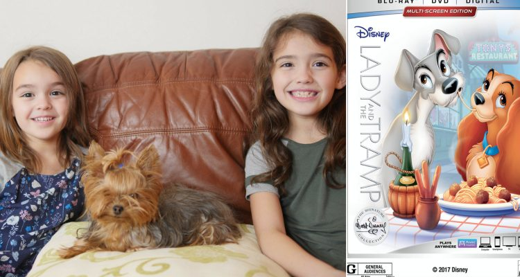 Lady and Tramp Giveaway and Kid Pet Sitting Tips From Theresa's Reviews & The Sammie and Georgie Show
