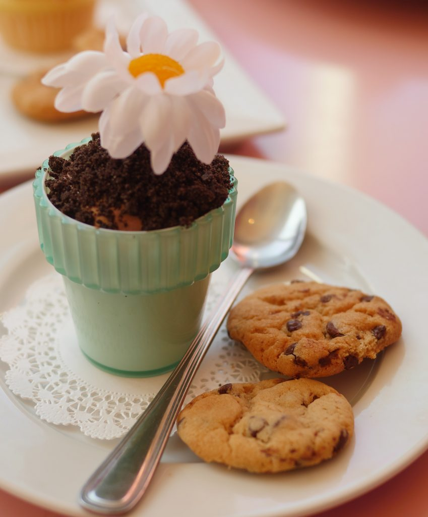 American Girl Cafe & Hair Salon Experience - Chocolate Mousse Flowerpot - Theresa's Reviews